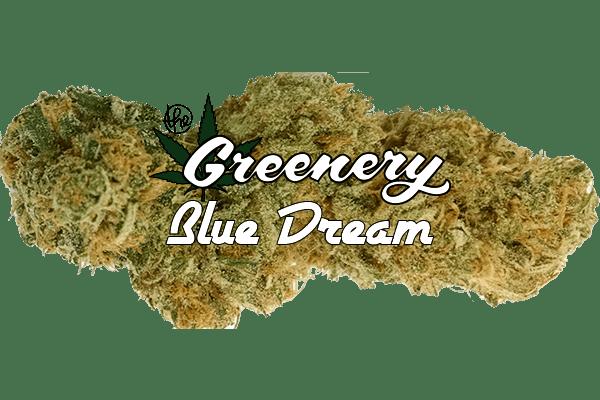 Blue Dream   Durango CO