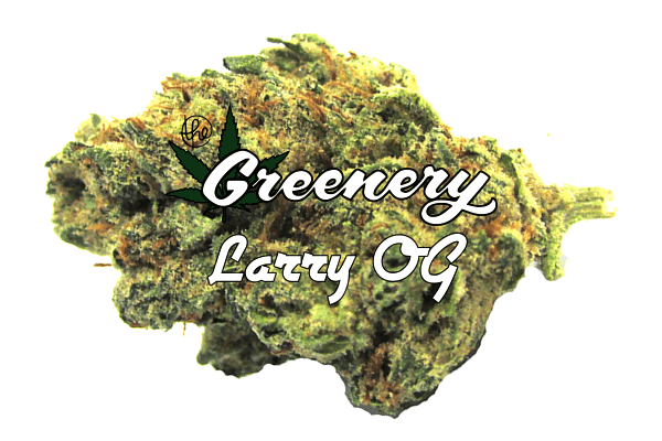 Marijuana Strains - Larry OG - Durango Co