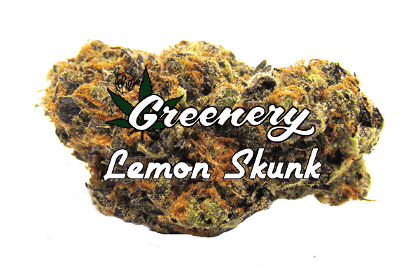 Marijuana Strains - Lemon Skunk - Durango CO
