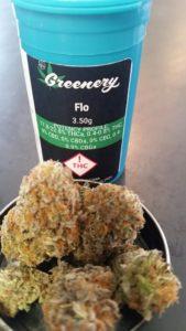Flo, Recreational Marijuana, High THC,