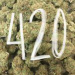 420, smoke weed, pot, marijuana, dispensary, dispensaries