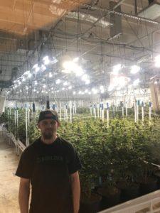 Madrone, Roy Williams, durango, the greenery, dispensary, dispensaries, durango dispensary, marijuana