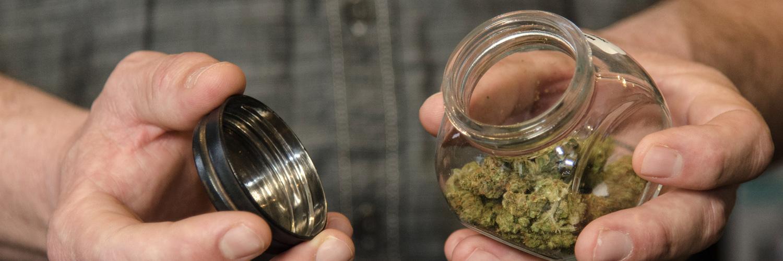 Today's Marijuana Selection | The Greenery | Durango, CO