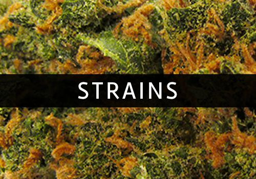 marijuana flower strains, Durango, Colorado